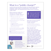 What is a Public Charge?